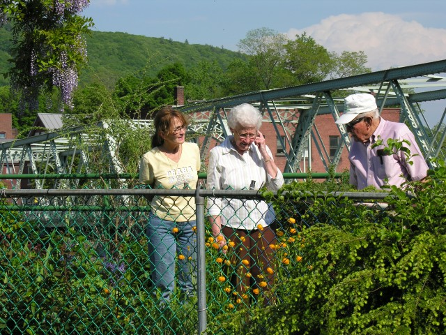 Visitors enjoying the Bridge last May