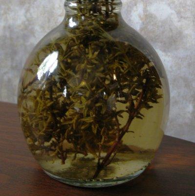 Herb Vinegar
