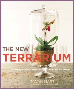 terrarium book cover